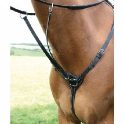 Salisbury 3 Point Breastplate