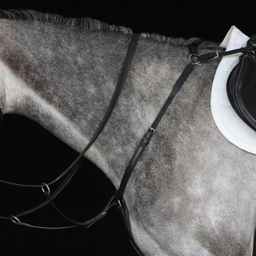 Collegiate Hunt Breastplate IV
