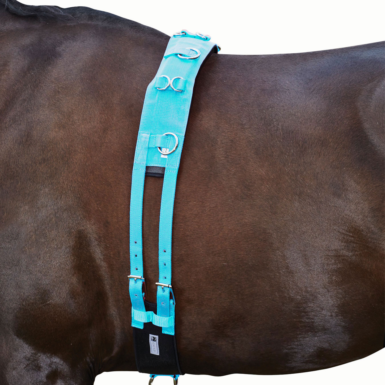 Kincade Brights Deluxe Equigrip Lunge Roller - Aqua