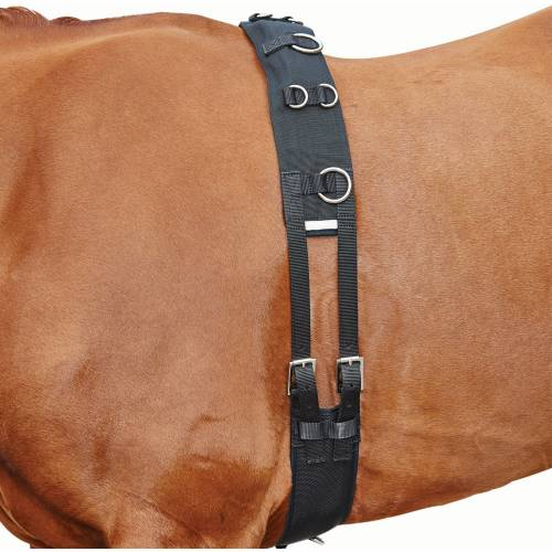 Kincade Lunge Roller with Fleece Lining