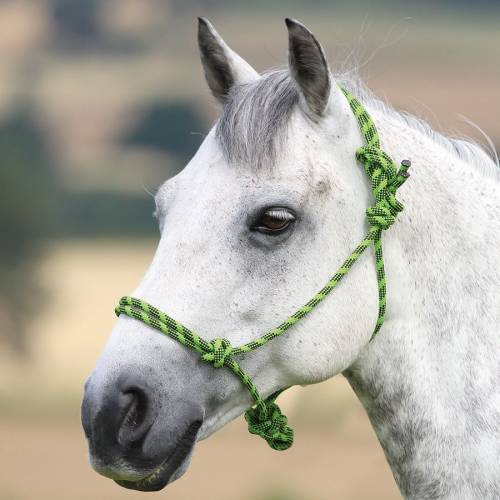 Shires Control Rope Headcollar
