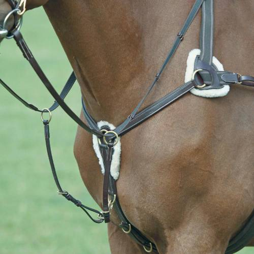 Salisbury 5 Point Breastplate