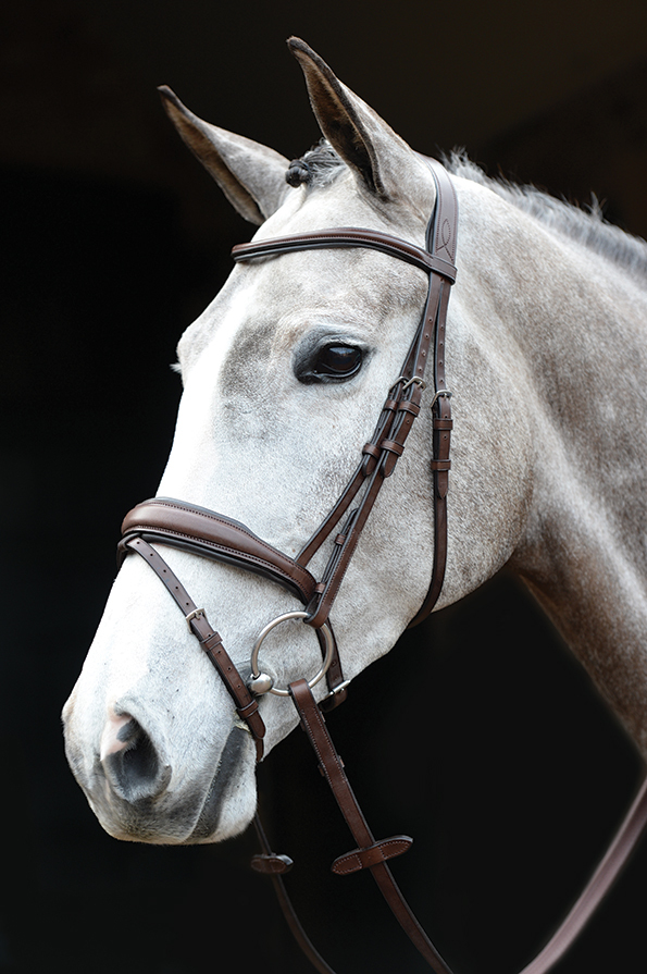 Collegiate Mono Crown Padded Flash Bridle