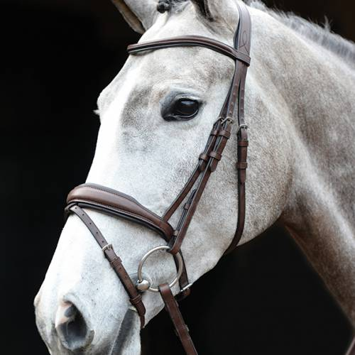 Collegiate Mono Crown Padded Flash Bridle - Brown