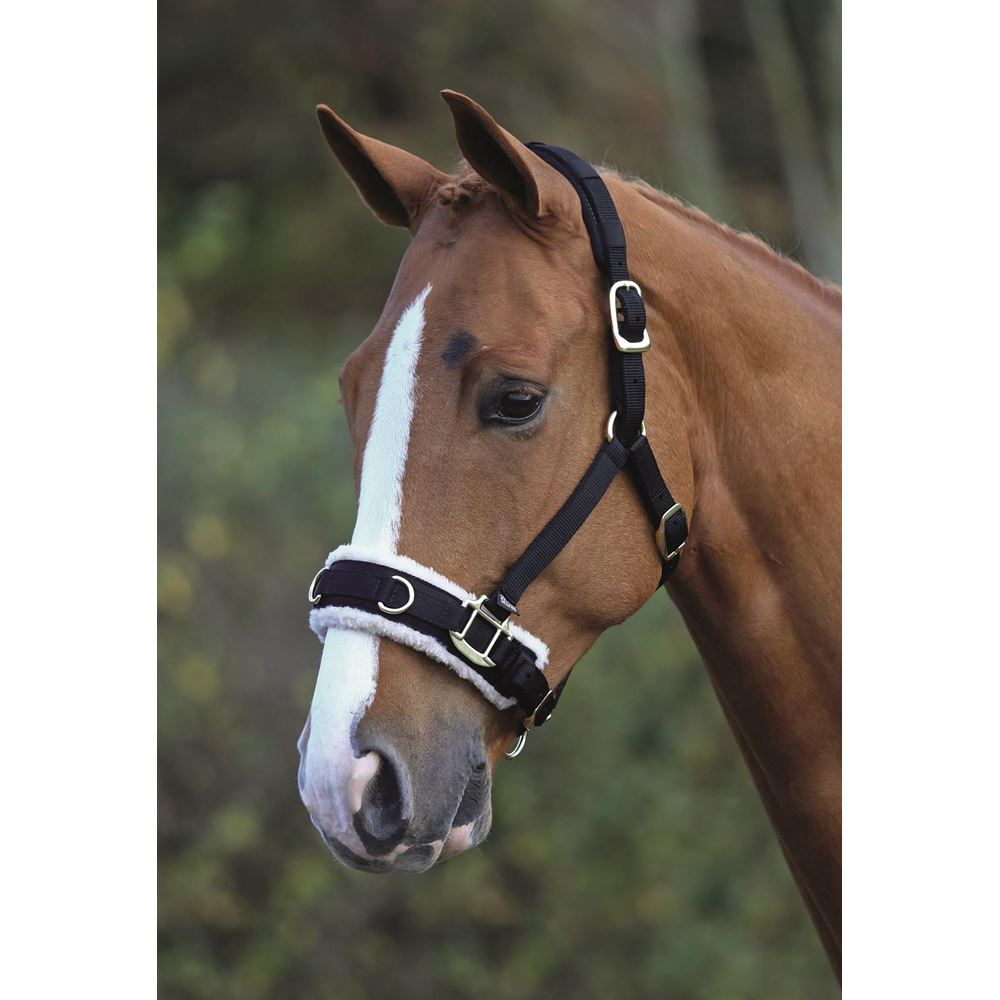 Shires Fleece Lunge Cavesson