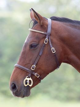 Shires Clincher In-hand Bridle