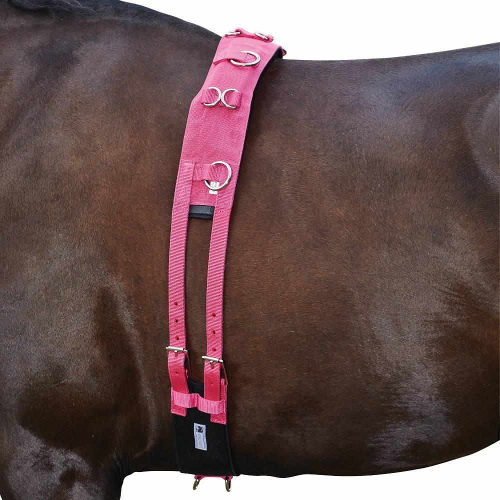 Kincade Brights Deluxe Equigrip Lunge Roller - Hot Pink