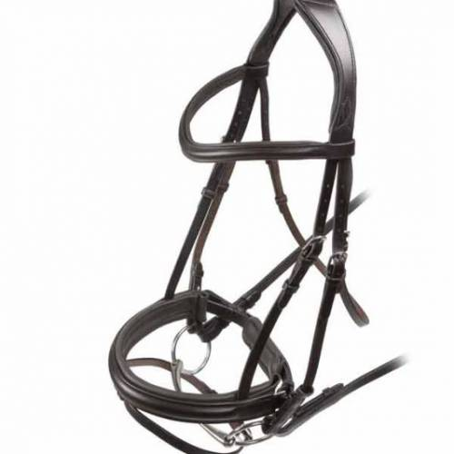 Shires Velocity Dressage Bridle With Flash