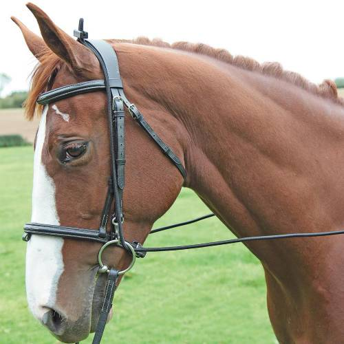 Shires Elastic Training Rein