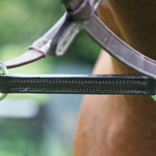 Blenheim Irish Martingale