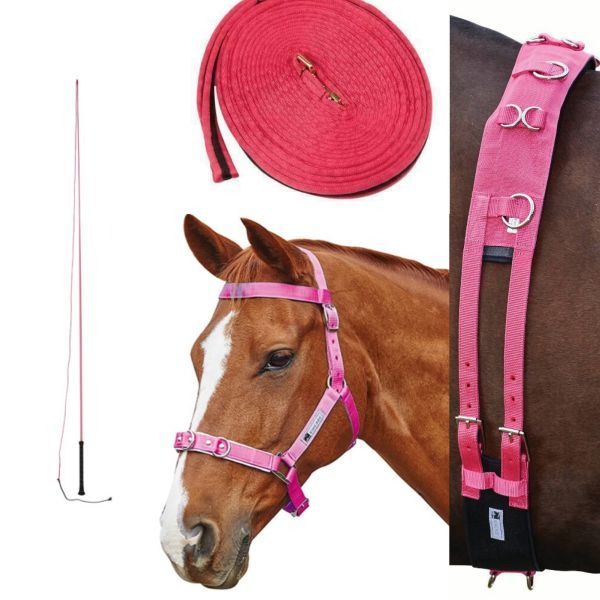 Kincade Brights Complete Lunging Set - Hot Pink
