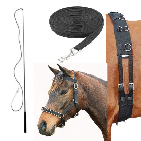 Deluxe Complete Lunging Set - Black