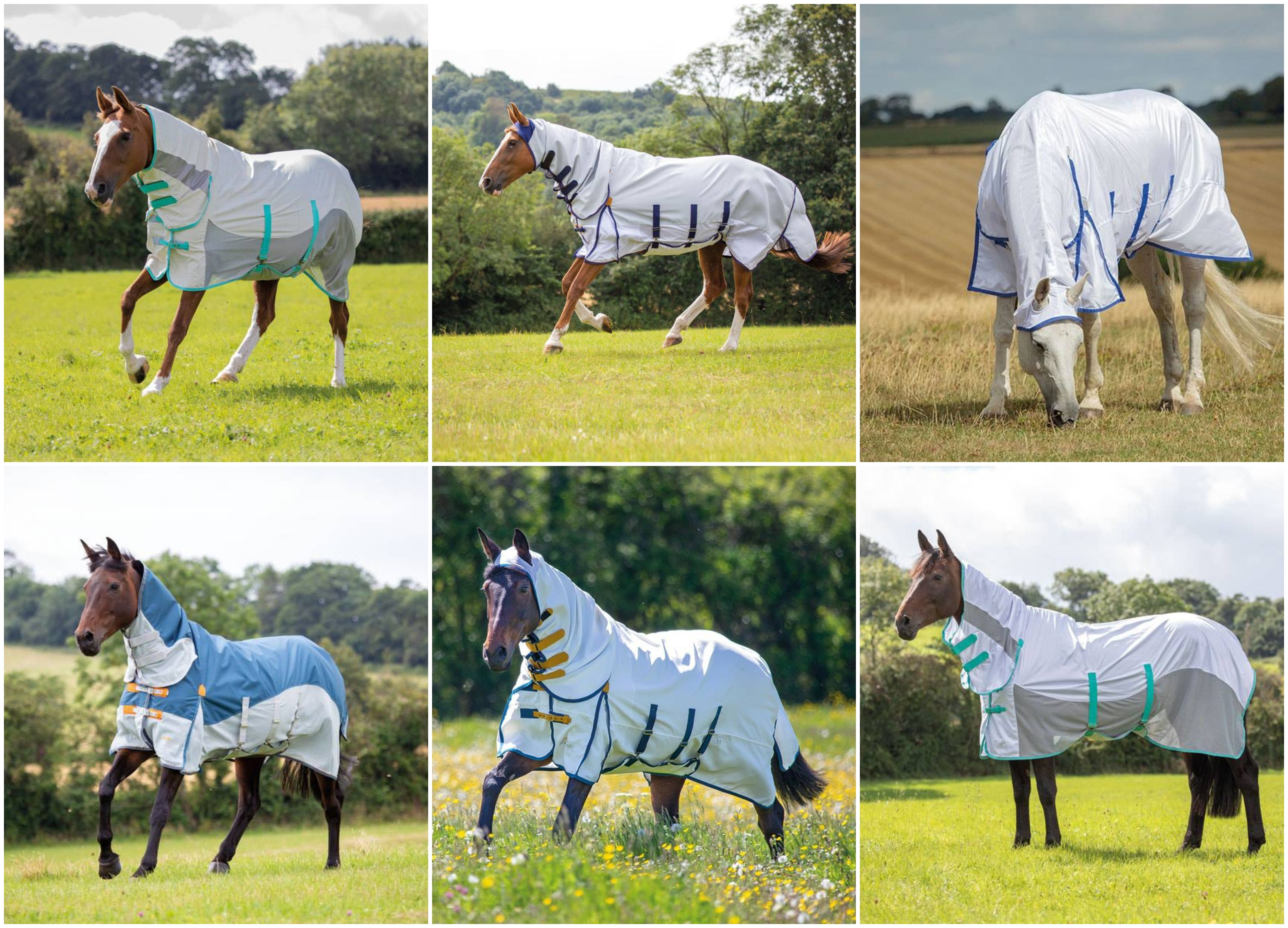 SUMMER RUGS - A SELECTION IN STOCK WITH MORE COMING VERY SOON!