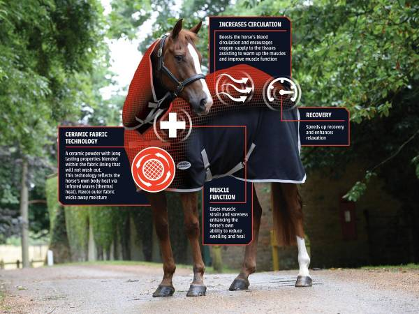 Treat your horses muscles with the NEW Therapy Tec Combo!